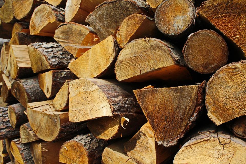 Exportul produselor din lemn ar putea fi permis numai sub formă de produs finit.